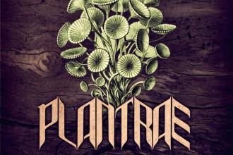Plantrae-Taproot-artwork