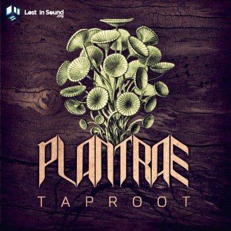 Plantrae-Taproot-artwork