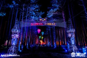 Electric Forest Music Festival 2015 – Preview