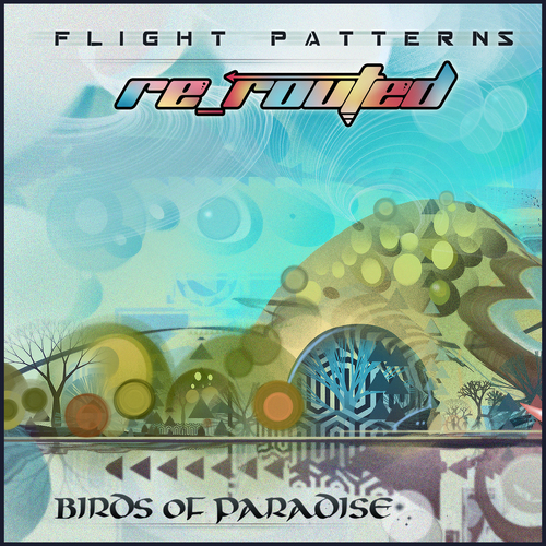 Flight Patterns (Re-Routed) Birds of Paradise